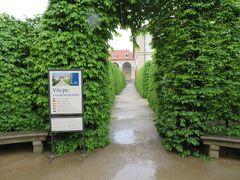 ホテル近くのヴァルトシュテイン宮殿。宮殿は土日しか開いていないけど、お庭にお邪魔するよ