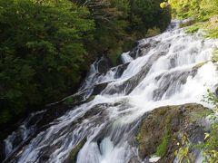 ここから見る竜頭ノ滝は流れが急です。