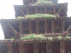 ニャタポラ寺院の5層の屋根には草が生えていた。