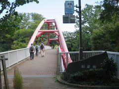 割岩橋を渡ります。 (12:58)  飯能河原のシンボルである「割岩橋」のライトアップ。 現在は落雷の影響で設備が故障しているため中止しているそうです。