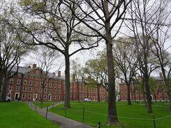 レンガ色の建物と芝の緑が見事! こんなキャンパスライフ、楽しいんだろうなぁ。 賢そうな学生たちが沢山いました。