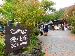 次にやって来たのは竜頭ノ滝。 今日の目的通り、秋の気配を少しずつ纏い始めている場所。