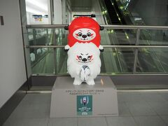 機内では気を失うように眠っていました・・・  羽田空港で見つけたラグビーW杯のマスコット。