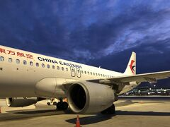 2019年9月16日から新ターミナルが利用開始されたと聞いていたので、着陸後どうなるかとワクワクしていたのですが、沖止めからのバス移動でした。  ターミナル2付近に着したらしく、飛行機に乗ったまま10分ほど移動し、ターミナル1付近の沖止め場所へと到着。