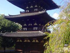 その北西の隅から南に歩くと南西の隅に三重塔が鎮座しています。  これも国宝ですが、火災から再建されたのは鎌倉時代前期ということですから、今から800年ほど前のものです。