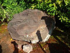 ちなみに境内のこの石は「かえる石」と言われます。  そのいわれはーー。