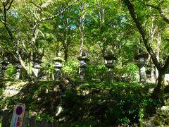 さて、早速出かけたのはーー。  前回の奈良方面旅行で門前まで来ながら閉門の時間に間に合わずすごすごと引き返した因縁?の神社、談山神社です。