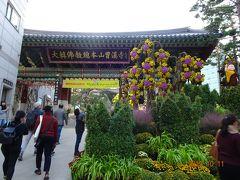 少し歩いて曹渓寺(チョゲサ)お花がきれいなお寺です。 韓国仏教を代表する寺院で、外国人を対象にテンプルステイを実施しているため、外国の方が多かった。