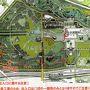 改良工事中の大阪万博記念公園・花の丘の「コスモス畑」をホロホロ散歩。(2019)