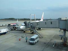 広島空港には定刻で到着しました。