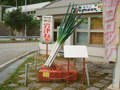 移動した先は道の駅フレッシュあさご。岩津ねぎの存在感でかし!