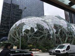 アマゾン スフィアに到着です。  球体は3つあり、真ん中が他の2つより少し大きかったです。