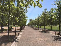 これが公園内の道。 確かに道の奥は海っぽい。