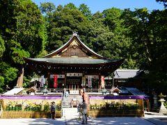 日牟禮八幡宮の駐車場に車をとめて、まずは神社に行ってみました。