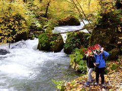 有名な「阿修羅の流れ」まで来ました。奥入瀬渓流の中で特に激しく豪快に流れている場所で、じっと眺めていると流れに吸い込まれそうな感覚に。