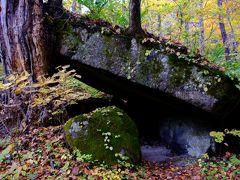 これが石ヶ戸。「石でできた小屋」という意味らしく、大きな一枚岩が木に寄りかかってたしかに小屋みたい。