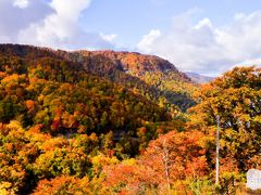 白神山地 十二湖見学を終わり帰路に着く途中の山々の紅葉は最高の 色合いで車窓からの俯瞰的眺望は最高であった。 日本キャニオンの紅葉風景。 一路、東北新幹線「北上駅」へ