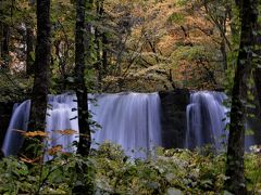 奥入瀬渓流散策「銚子大滝」 足場が悪く、前日の雨で道はぐじゃぐじゃ。 流石、観光客は多く、狭い散策路を流れに沿って白糸の滝まで 散策。