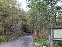 さて、河童橋近くの小梨平を散策します。