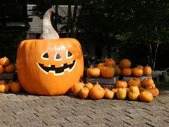 レストラン オーベルジュから「萌木の村」へ移動しました。   もうじきハロウィン、沢山のオレンジ色のかぼちゃが並んでいました。大きなかぼちゃの中身をくりぬいてジャック・オー・ランタンが作ってありました。