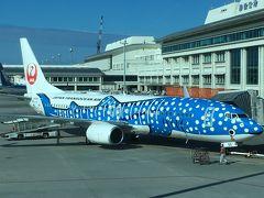 那覇空港到着後、窓の外にはジンベエジェットが見えましたが、こちらは宮古島行きでした。