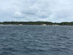 きょうはダイビングです。 北東の風が強いのと、うねりを伴った波2.5mという事で、風の影響を受けにくい黒島周辺で3本潜る事になりました。  1本目 黒島V2アーチ 2本目 黒島カメハウス 3本目 黒島V字リーフ