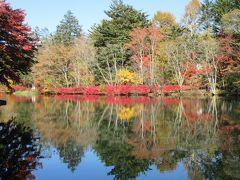 紅葉の雲場池