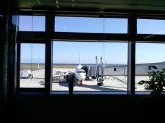 大分空港の外の風景 搭乗機が東京より到着しています
