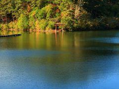8:00 美鈴湖(みすずこ)  美鈴湖は農業用のため池。 釣り人が多かった。   駐車場 無料