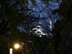 熊本城が見えてきました。 もう少し大きく見えないかなと思っていたらすっかり隠れてしまい。