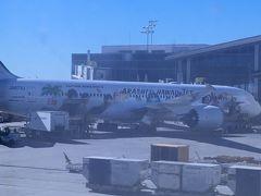 午前仕事して一旦帰宅後に羽田空港へ。 約9時間半のフライトでLAXに到着 結構寝られたからか、フライトも短く感じた  嵐jet発見!