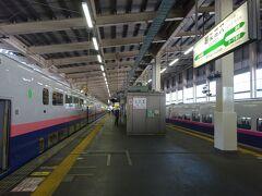 大宮駅からノンストップ、わずか44分で越後湯沢駅に着いた。