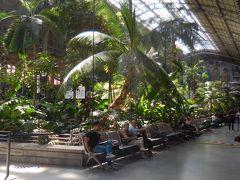 駅中は熱帯植物園のよう。