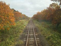 列車の最後尾からの一枚。  何にもないところを列車が進む。 何にもないけど旅情は満点。 乗って残そう花咲線(フリーパス利用なので大きな声では言えませんが。)