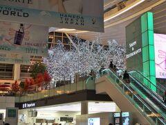 羽田空港には出発4時間以上前の17時過ぎに到着。 ハロウィンも終わり、もう冬の装いになっているターミナル内。 キラキラした装飾はクリスマス仕様かな。 とってもきれいだけど、今日はここでゆっくりしている場合ではありません。
