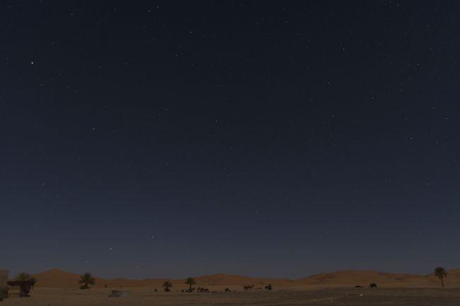 夜は満天の星空と砂漠の撮影。<br />寝る時間ももったいないくらいの感動ですが、翌朝は夜明け前から砂漠の日の出を狙いますので、ちょこっとは寝ました(笑)