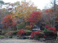次に訪れたのは「もみのき森林公園」 ちゃみおは独身時代、職場の人と一緒に来て以来かも。 相当昔です^^;  紅葉はきれいです♪