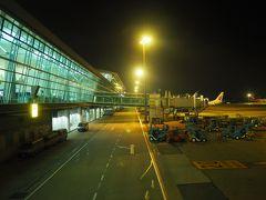 ああ、空港はどこの国も同じですねえ。