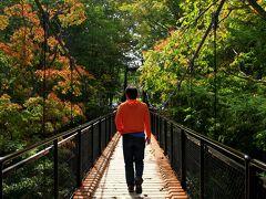羊蹄山の伏流水が絶え間なく湧き出す湧水スポットを中心に公園として整備された「ふきだし公園」は、散策するのにも最適です。