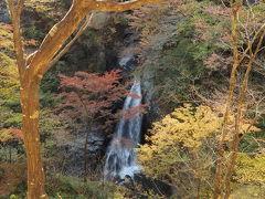 絶叫吊橋を渡りきる手前に大滝が見えてきました!!