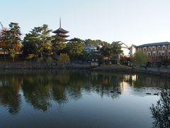 朝早く起きて、自転車で春日大社へ。 猿沢池から興福寺の五重塔が見えます。