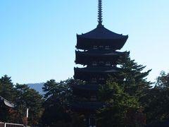国宝の五重塔