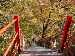おおおおおおお!!!!(*`ロ´ノ)ノ こ、これはすごい橋だ。。戻ってくる時、、登るのよね。。。