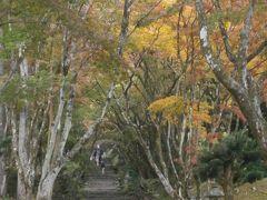 そしてお目当ての鶏足寺へ   やはり今年の紅葉は少し遅れているようです