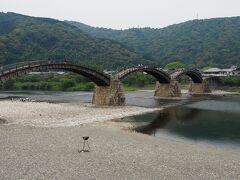 錦帯橋どーん! 思っていたより大きいですね!