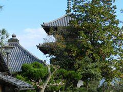 法起寺三重塔も見えています。 この奥は拝観料が必要です。今日のメインは中宮寺&法隆寺なので、法起寺の拝観はパス...