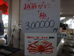 越前ガニの大きいもの、甲羅の幅が14.5cm以上あるものを「極」といって、ブランド品としてい売り出しているんですけど、、、30万円とのこと。。。越前ガニ自体、私のような庶民には高根の花なのに、30万円のカニって誰が買って食べるのかなぁ。