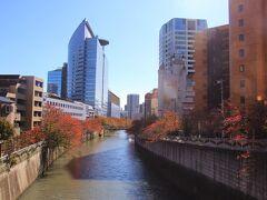目黒川の桜並木はだいぶ紅葉しています