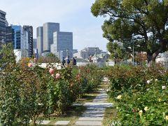 中之島公園は大阪市中心部にあり、水と緑に囲まれた街中のオアシスです。