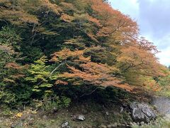 青森への帰りがけに薬研渓流に立ち寄りました。